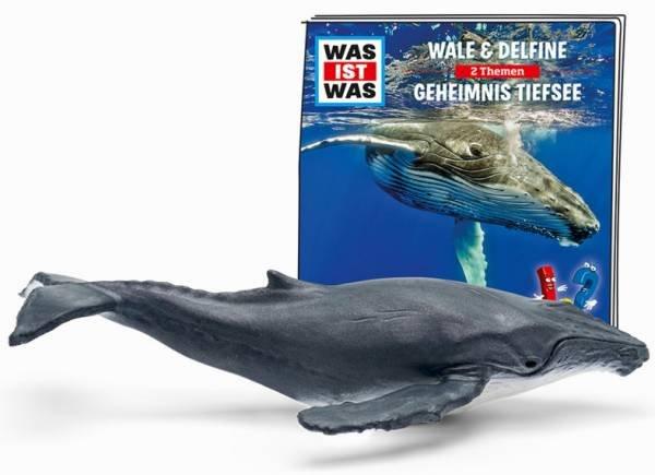 Tonies Was Ist Was Wale & Delfine - Geheimnis Tiefsee